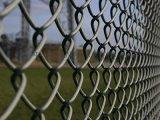 朋英 马路绿化勾花网 低碳钢丝喷塑围栏网 厂家直销
