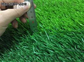 人造草坪幼儿园 仿真草坪厂家 足球场运动草坪