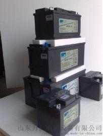 12v蓄电池ups铅酸蓄电池德国阳光原装进口