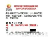 编制湖南湘潭可行性研究报告的公司-武汉博文佳