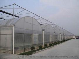 大型蔬菜花卉连动薄膜温室 青州泉瑞温室建造