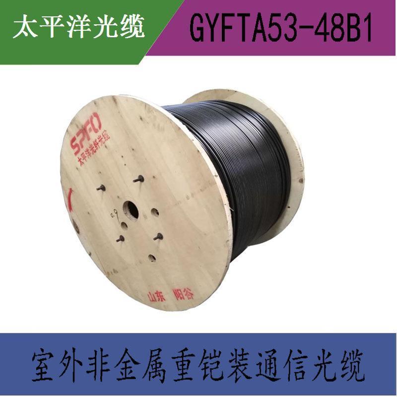 【太平洋光纜】GYFTA53-48B1 48芯單模 室外非金屬鎧裝光纜 直銷