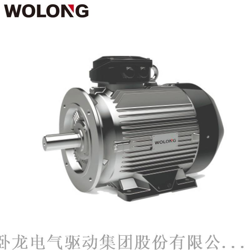 卧龙WE4系列YE4一级能效超**效电机适用水泵、风机、机床