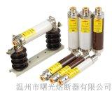 曙熔高压保险XRNP1-40.5KV/0.5A