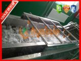 供应辽宁省酱菜厂蔬菜清洗机设备希源牌QX-4000型酱菜厂专用果蔬清洗设备