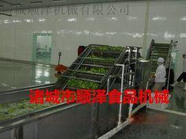 不锈钢果蔬清洗机 蔬菜清洗机 顺泽不锈钢果蔬清洗设备