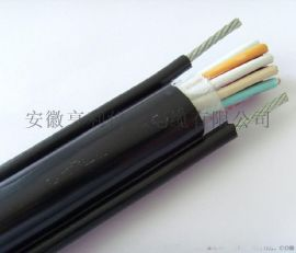 控制信号屏蔽电缆ZR-ia-K2YV22半壁店钢铁