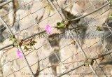 邊坡網廠家-供應內蒙古加格達奇- SNS柔性邊坡防護網-鋼絲繩網