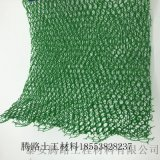 坡面保護使用幾層的三維植被網 騰路三維植被網墊