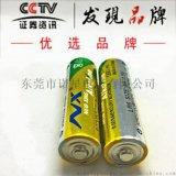 环保LR6碱性5号电池AA 有MSDS WERCS