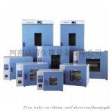 河南實驗電熱鼓風乾燥箱廠家直銷