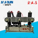 独立零序ZW32-12F/630 户外高压真空断路器 10KV 智能带看门狗