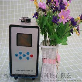 空气污染不容小视小机型粉尘采样器
