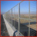 足球场隔离网 喷塑隔离网 光伏围栏网厂