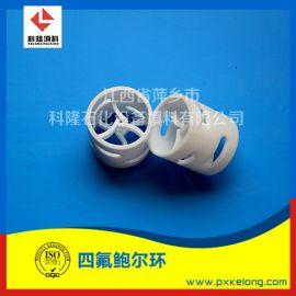 塑料聚四氟乙烯鲍尔环DN38PTFE鲍尔环填料