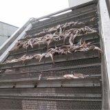 山东瓦罐鱼罐头油炸生产线
