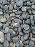 河南5-8厘米白色机制鹅卵石生产厂家,白色鹅卵石多少钱一吨