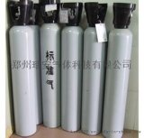 8L甲烷标准气,河南瑞安气体专业定制