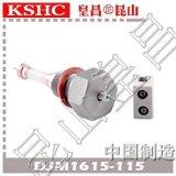 超纯氧化铝陶瓷水位电极DJM1615-115锅炉汽包陶瓷电极