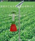 云南太阳能频振式杀虫灯  诱杀技术 太阳能杀虫灯远离农药绿色健康