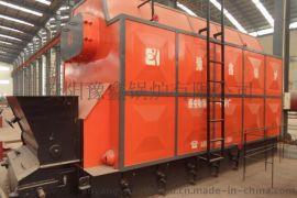 10噸生物質蒸汽鍋爐(雙鍋筒)