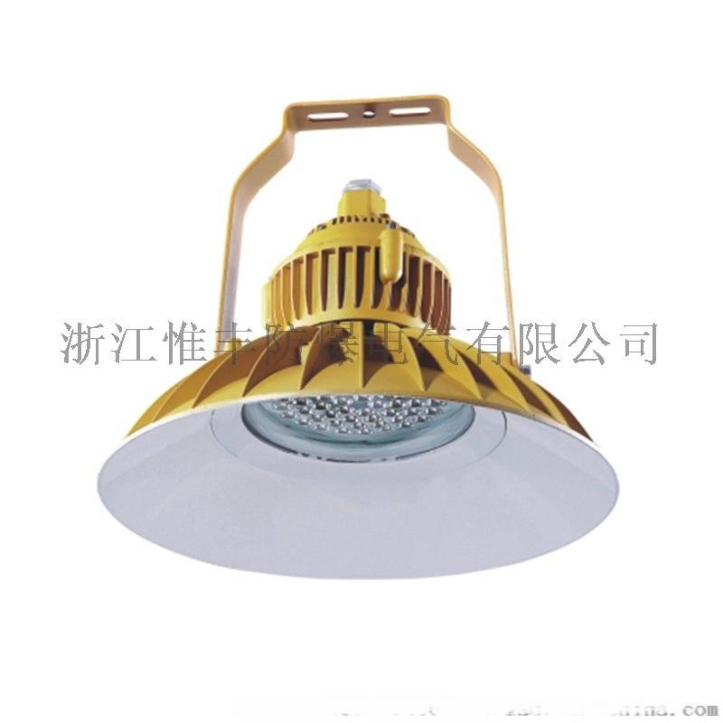 浙江惟豐防爆BLD77防爆免維護LED節能吊燈
