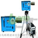 DS-21RI型呼吸性粉尘采样器(测定准确)