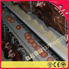 厂家供应养殖铁丝网 热镀锌电焊网 防锈蚀焊接网 鸡笼网