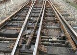 木枕50Kg/m鋼軌7號複式交分道岔(叄標線6028)