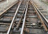 木枕50Kg/m钢轨7号复式交分道岔(叁标线6028)