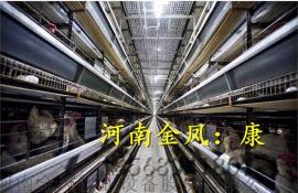 蛋鸡笼 鸡笼养殖设备 全自动鸡笼 蛋鸡养殖设备