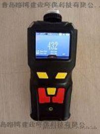 国产LB-MS4X单一有毒有害气体的检测仪