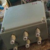 厂家直销BXKX系列防爆控制箱 防爆配电箱 200*300