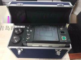 烟尘气测试仪 LB-70C 可以检测烟尘和烟气
