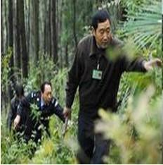 森林防护人员管理系统