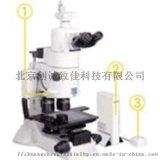 MULTIZOOM AZ100M多功能变焦显微镜