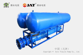 QWF浮体式潜水泵, 漂浮式潜水泵, 江河抽水机械泵