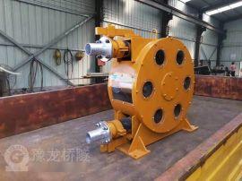 河南大流量工业软管泵厂家 国产蠕动泵软管