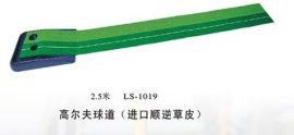 高尔夫推杆练习器 (LS-1018)