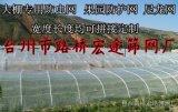 養殖網 塑料網布 農用網 防蟲網 尼龍網大寬幅高密度120目