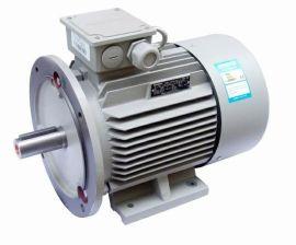 东莞三相220V 60Hz 西门子电机