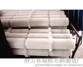 瑞铭核桃表面清洗刷 胡萝卜清洗机毛刷辊 工业毛刷辊 毛刷滚 毛刷板