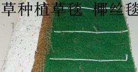 环保草毯,植物纤维毯,生态袋