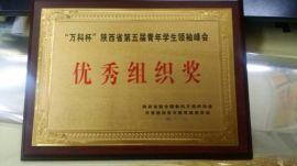 西安奖牌制作  金箔奖牌生产 西安不锈钢奖牌制作