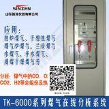 电捕焦油器煤气含氧量TK-6000型煤气氧含量在线分析系统