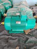 YZR160L電動機 起重冶金電動機 行車電機