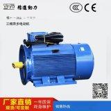 螺桿壓縮機用驅動電機Virya