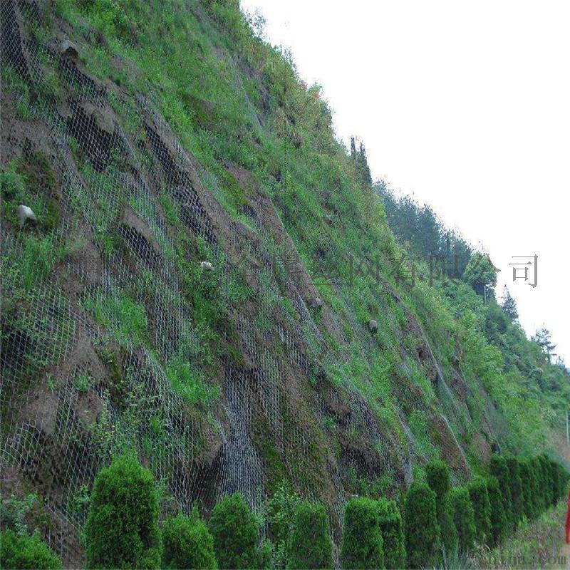 四川14#鍍鋅鐵絲網找雙虎勾花網廠邊坡復綠金屬網