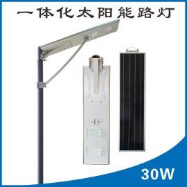 6米农村太阳能路灯30W太阳能感应灯小型太阳能发电一体化太阳能灯