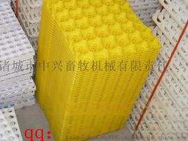 30枚塑料鸡蛋托 塑料鸡蛋托 鸡蛋托生产厂家